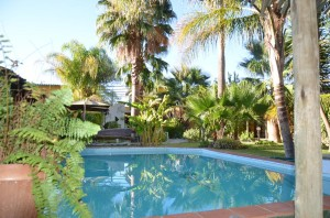 River-Guesthouse_Garten-und-Swimming-Pool