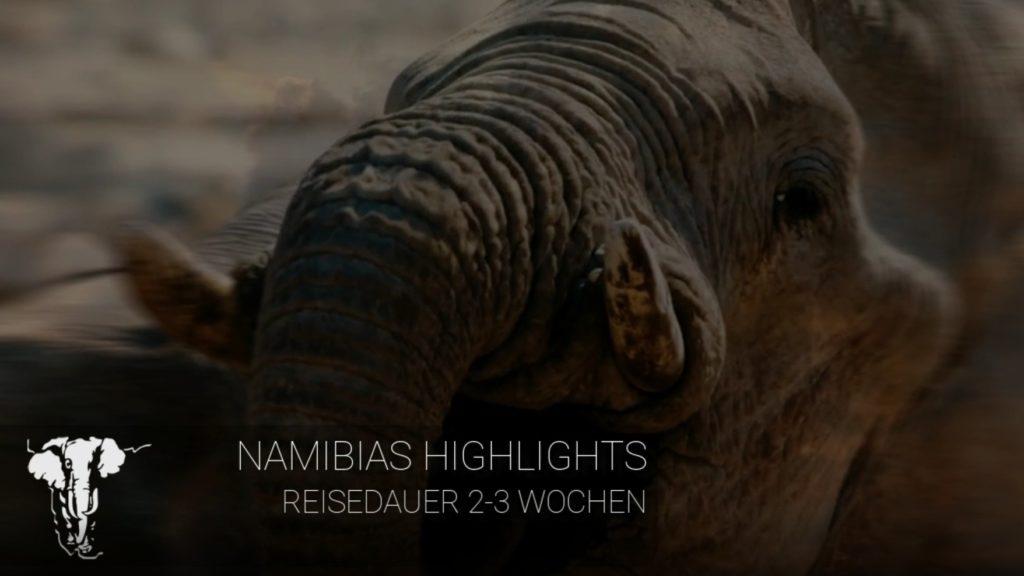 Titelbild Namibias Highlights - 2-3 Wochen Reisedauer - Elefant im Hintergrund